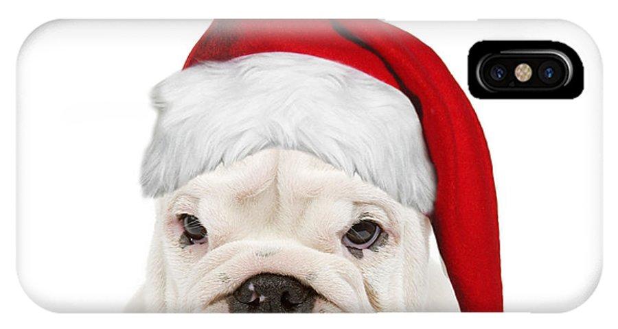English Bulldog IPhone X / XS Case featuring the photograph English Bulldog In Christmas Hat by Jean-Michel Labat