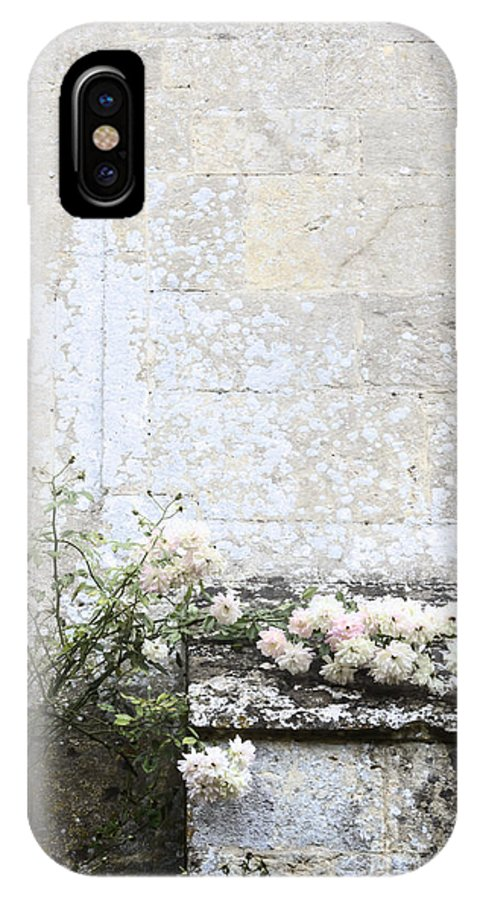 Floral; Flora; Flowers; Rose; Roses; Bush; Vine; Climb; Climbing; Pink; Green; Blue; Stone; Facade; Building; Architecture; White; Aged; Decay; Branches; Tall; Roof; Wall; Side; Green; Leaves; Beautiful; Pretty; Lovely; Serene; Feminine; English Rose; Cultivated; Bunch; Group; Calm IPhone X Case featuring the photograph English Roses IIi by Margie Hurwich