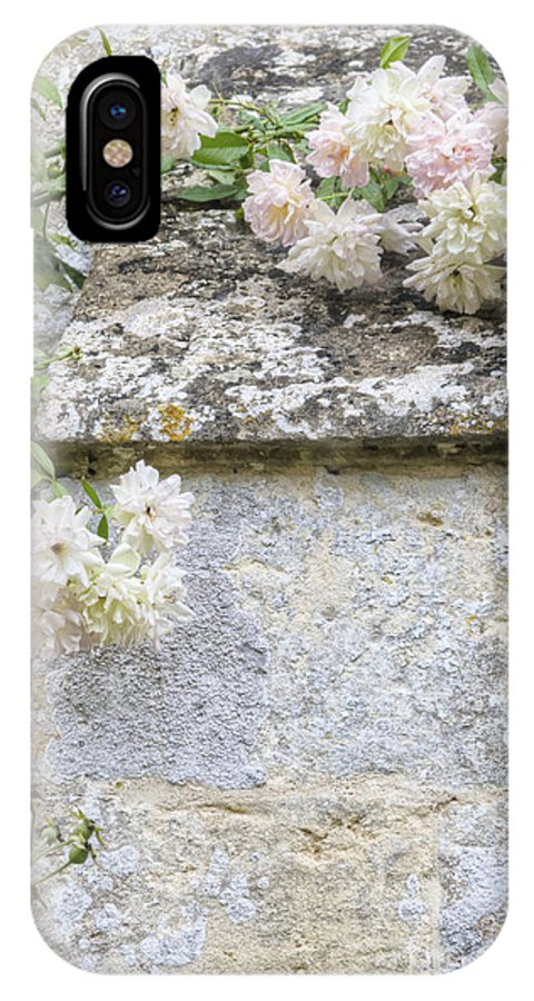 Floral; Flora; Flowers; Rose; Roses; Bush; Vine; Climb; Climbing; Pink; Green; Blue; Stone; Facade; Building; Architecture; White; Aged; Decay; Branches; Tall; Roof; Wall; Side; Green; Leaves; Beautiful; Pretty; Lovely; Serene; Feminine; English Rose; Cultivated; Bunch; Group; Calm IPhone X Case featuring the photograph English Roses Vi by Margie Hurwich