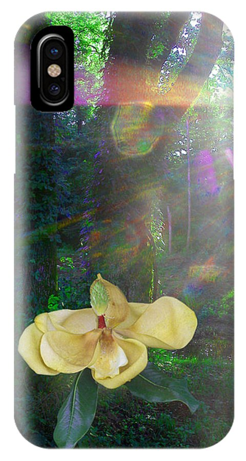 Magnolia IPhone X Case featuring the photograph Enlightened Magnolia by Anne Cameron Cutri