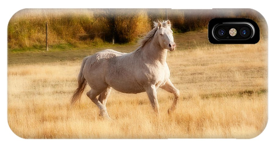 Horse IPhone X Case featuring the photograph Equinelibrium by Peter Olsen