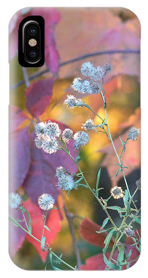 Autumn IPhone X Case featuring the photograph Essence by Natalie LaRocque