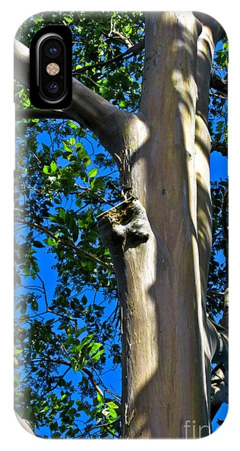 Eucalyptus IPhone X Case featuring the photograph Eucalyptus by Joel De la torre