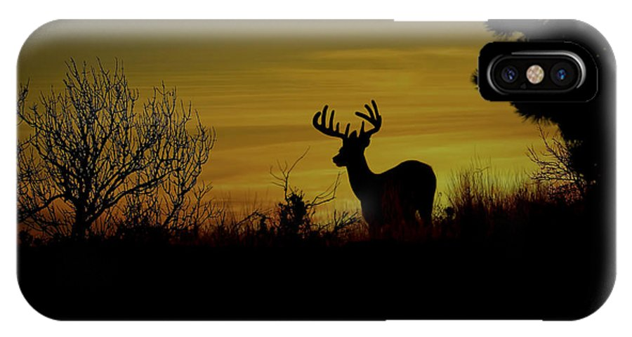 White Tailed Buck IPhone X Case featuring the photograph Evening Buck by Steve McKinzie