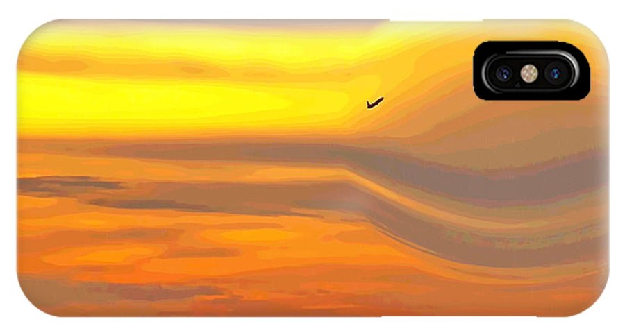 Irfan Collection IPhone X Case featuring the photograph Evening Flight by Irfan Gillani