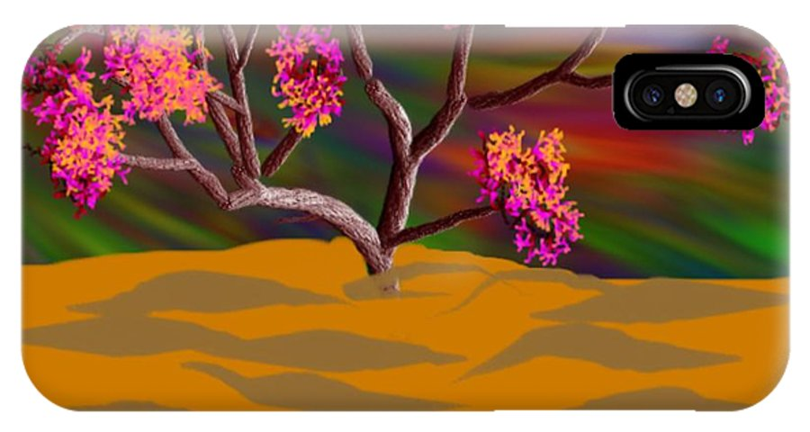 Landscape IPhone X Case featuring the digital art Evening in end of desert by Dr Loifer Vladimir