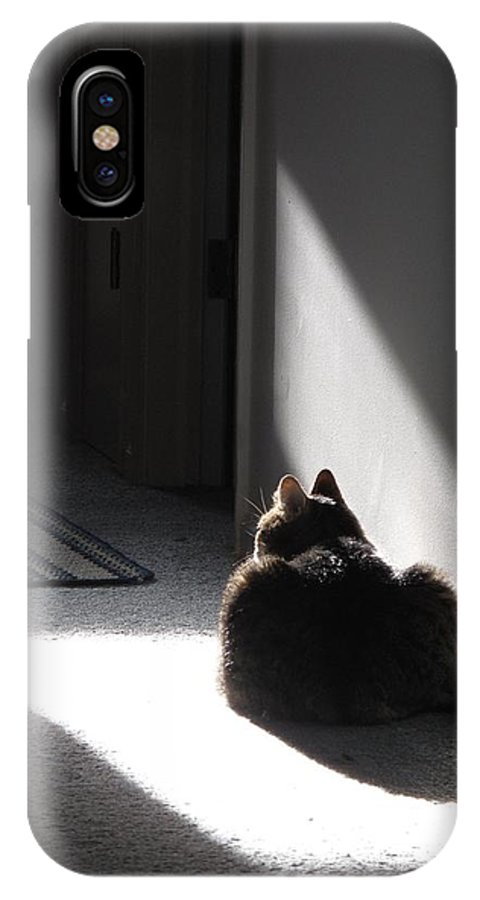 Cat IPhone X Case featuring the photograph Everybody Needs A Sunny Spot by Louise St Romain
