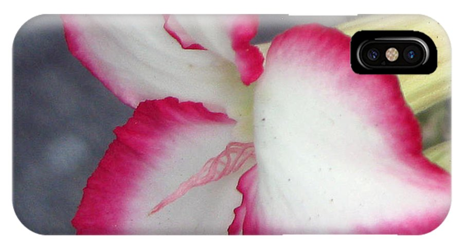 Pink IPhone X Case featuring the photograph Exposed by Debi Singer