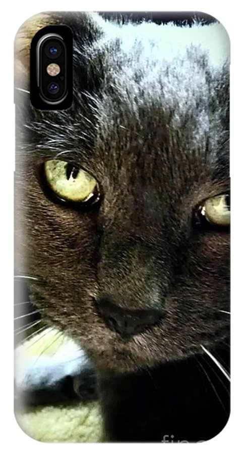 Mikey The Kitty IPhone X Case featuring the photograph Eye Of My Tiger by Marlene Williams