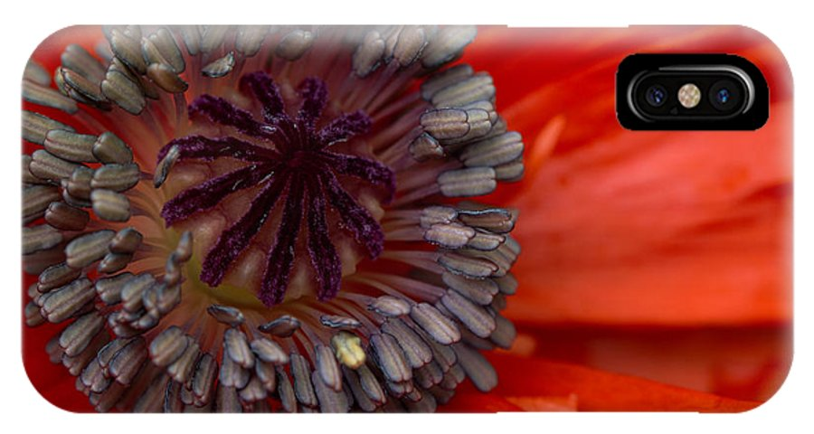Card IPhone X Case featuring the photograph Eye Of The Poppy by Guy Shultz