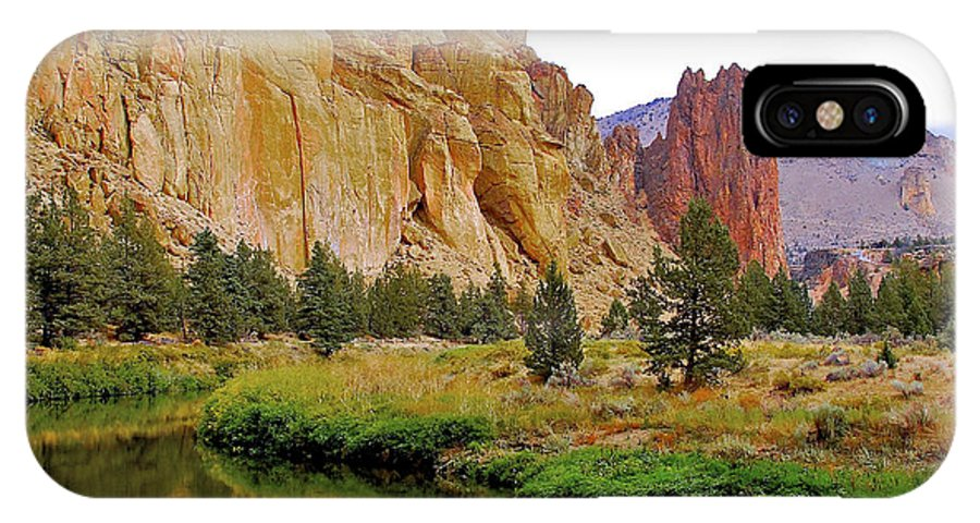 Landscapes IPhone X Case featuring the photograph Face Value by Lisa Kelsey