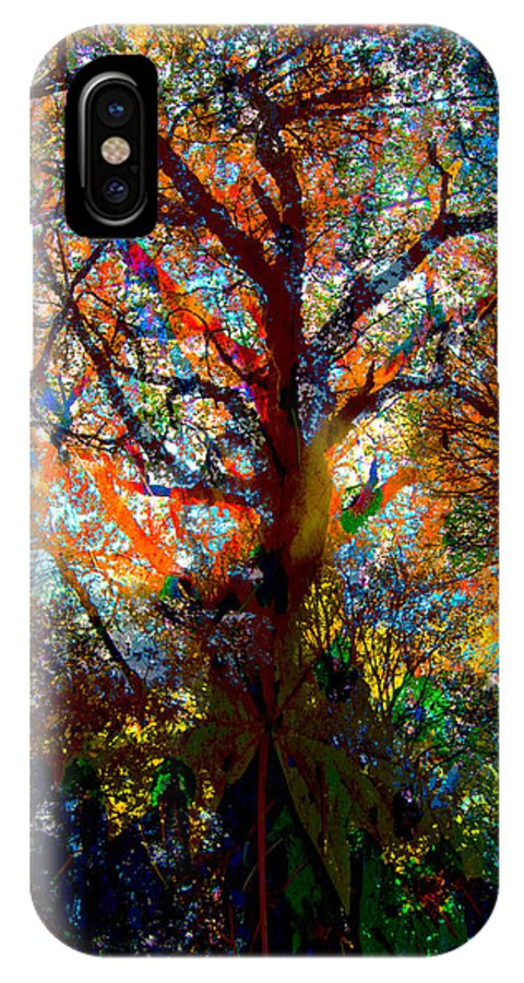 Scenery IPhone X Case featuring the photograph Fall Colors by Jeffrey Woodley