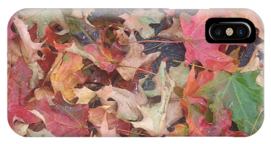 Ground IPhone X Case featuring the photograph Fall by Desi Butler