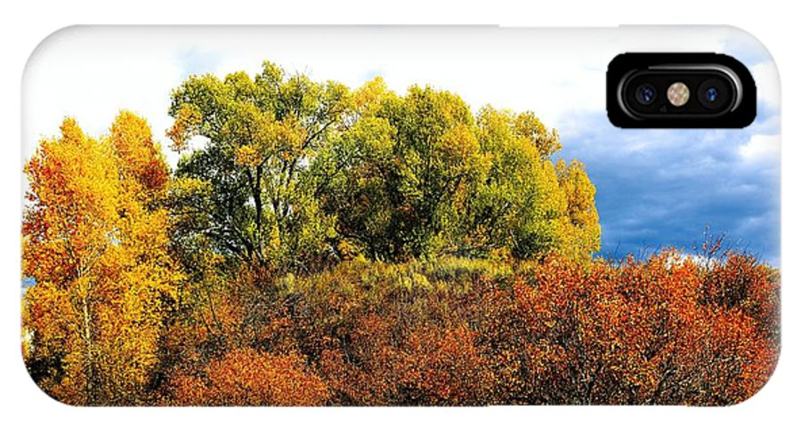 Marabou IPhone X / XS Case featuring the photograph Fall Foilage by Gerald Blaine