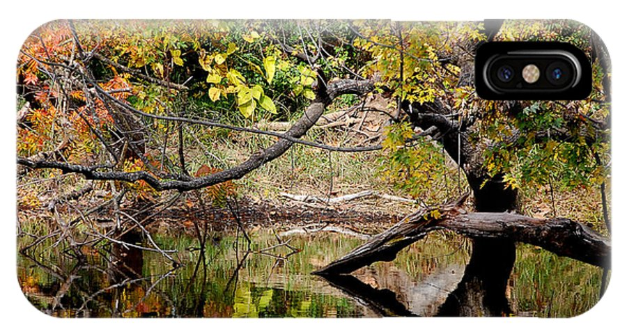 Fall Leaves Colors Branches Water One Mile Bidwell Park Chico Ca IPhone X Case featuring the photograph Fall From The Water by Holly Blunkall