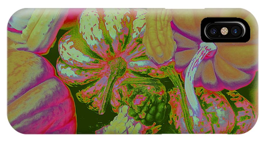 Fall IPhone X Case featuring the photograph Fall Gourds Pinked by Erin Rednour