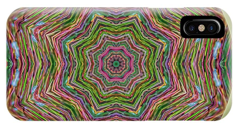 Mandala IPhone X Case featuring the photograph Fall Grass Mandala by Beth Sawickie