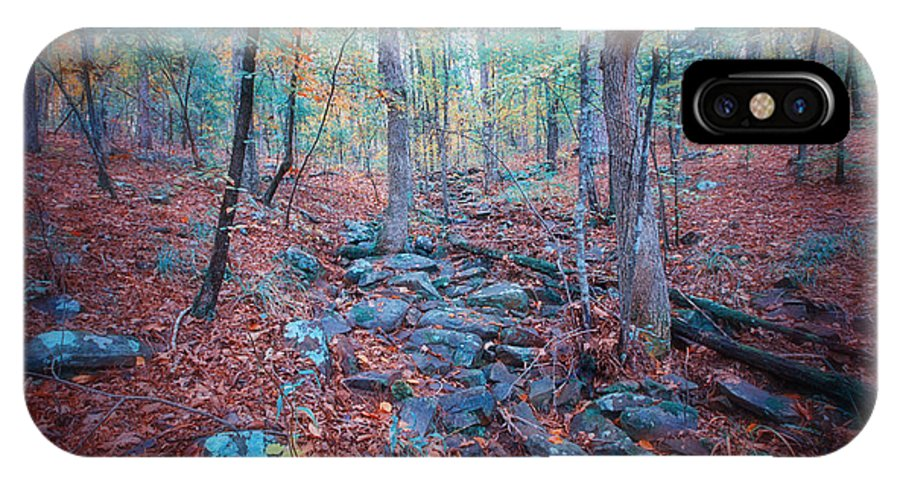 Fall IPhone X Case featuring the photograph Fall In The Woodlands by Randy Davidson
