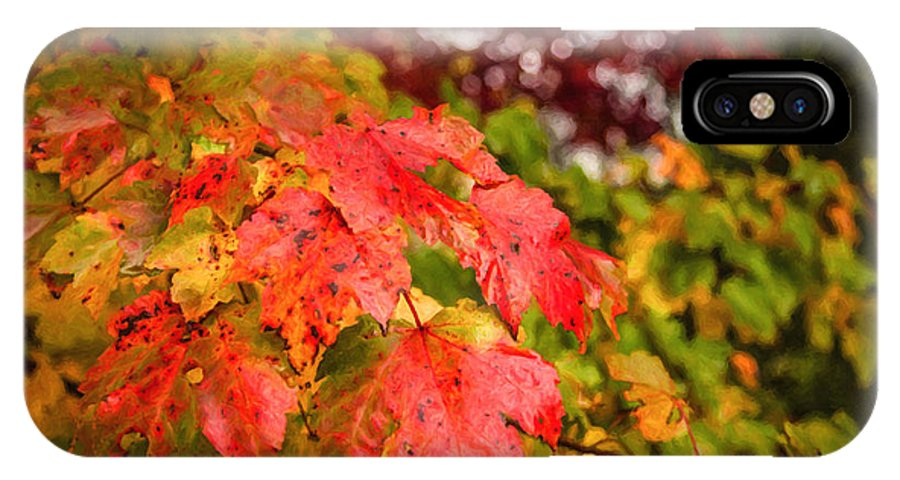 Fall IPhone X Case featuring the photograph Fall Maple Leaves by Wolfgang Hauerken