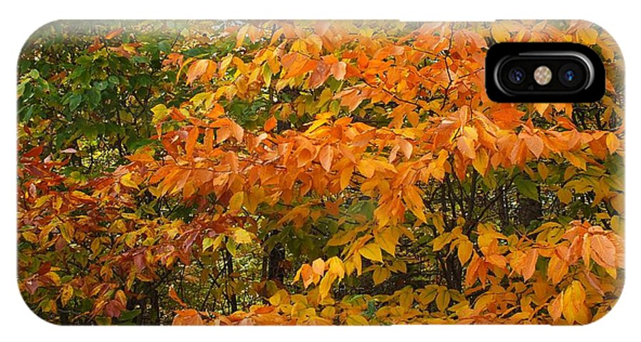 New England IPhone X Case featuring the photograph Fall Mix by Gene Cyr
