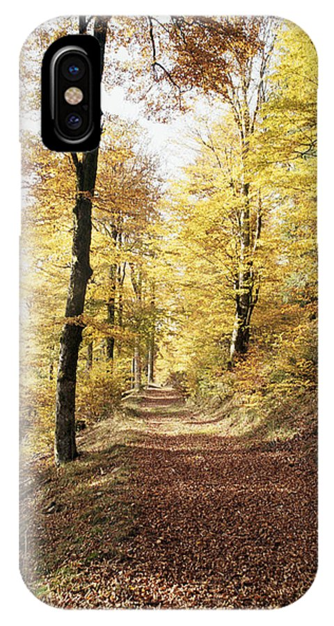 Nature IPhone X Case featuring the photograph Fall Path by Patrick Kessler