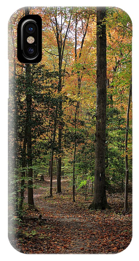 Woods IPhone X Case featuring the photograph Fall Trail by Rhonda Burger