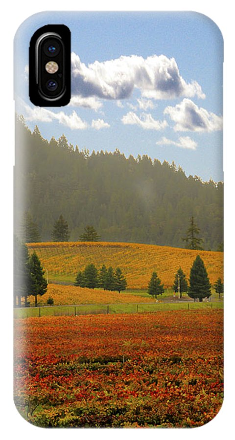 Fall IPhone X Case featuring the photograph Fall Vineyards 2 by Pauline Darrow