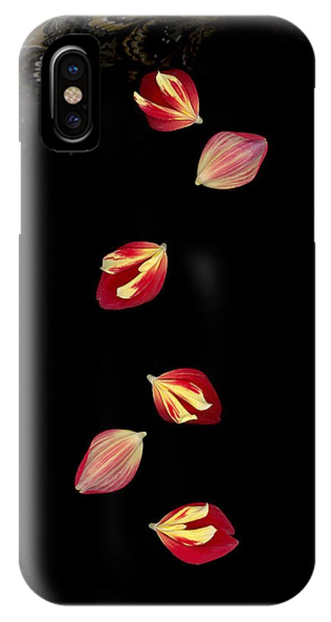 Petal IPhone Case featuring the photograph Falling by Suzanne Gaff