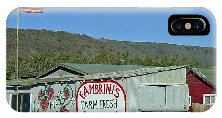 Farm Fresh Produce IPhone X Case featuring the photograph Fambrini's Farm Fresh Produce by Suzanne Gaff