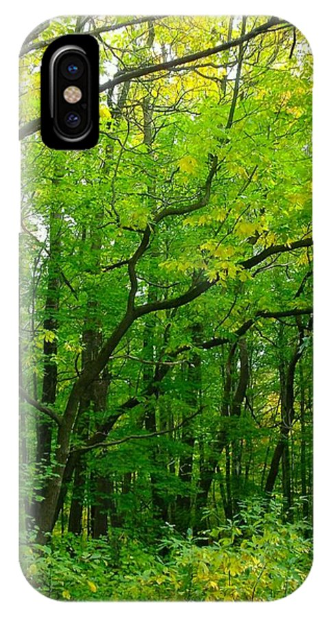 Lush Green Forest IPhone X Case featuring the photograph Fantastic Forest by Sylvia Herrington