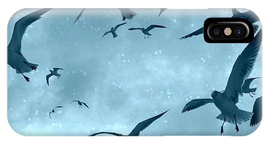 Seagulls IPhone X Case featuring the photograph Feeding Frenzy by Danyelle Glendenning