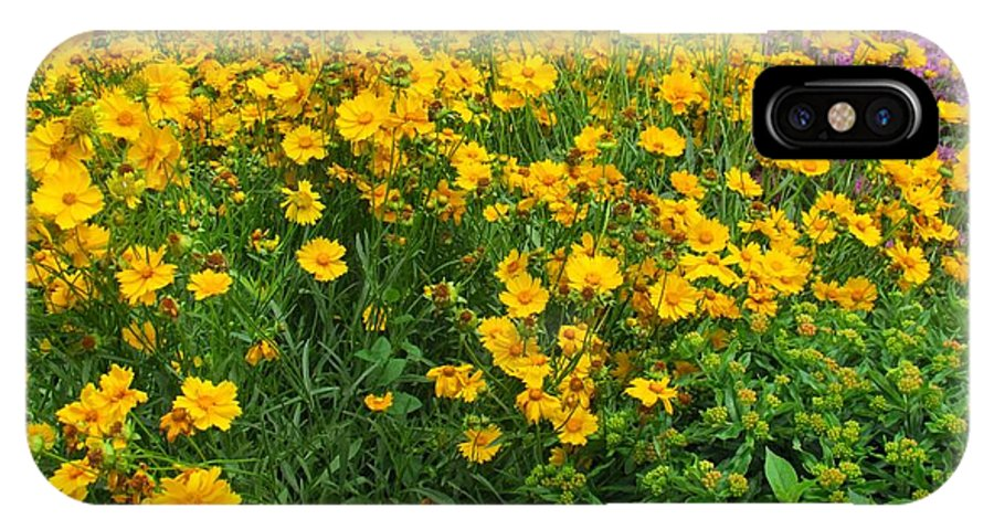Yellow Flowers IPhone X Case featuring the photograph Feeling Sunny by Jennifer Broadstreet Hess