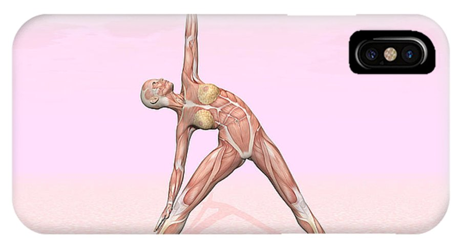 Anatomy IPhone X Case featuring the digital art Female Musculature Performing Triangle by Elena Duvernay
