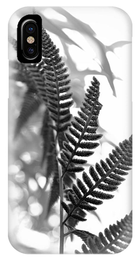 Frond IPhone X Case featuring the photograph Fern Fronds by Nathan Abbott