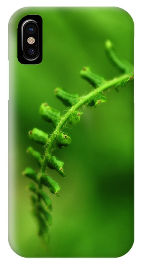 Fern IPhone X / XS Case featuring the photograph Fern by Heather Fox