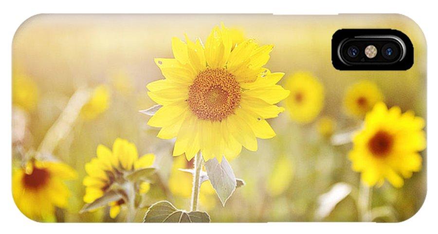 Sunflower IPhone X Case featuring the photograph Field Of Sunshine by Scott Pellegrin