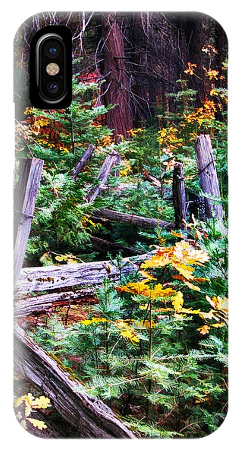 Wawona IPhone X Case featuring the painting Fields And Fences Of Wawona In Yosemite National Park by John Haldane