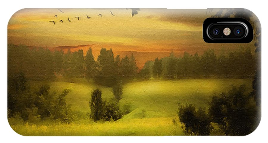 Digital Painting IPhone X Case featuring the painting Fields Of Dreams by Georgiana Romanovna