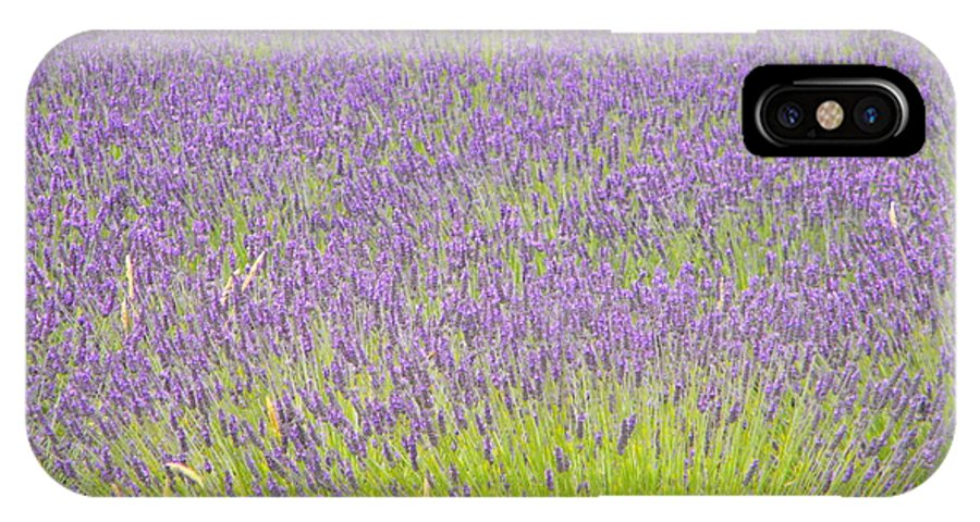Lavender IPhone X Case featuring the photograph Fields Of Lavender by Phyllis Britton