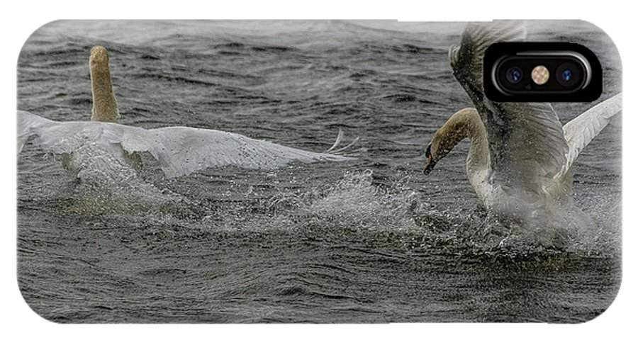 Swan IPhone X Case featuring the photograph Fighting Swans by Trevor Kersley