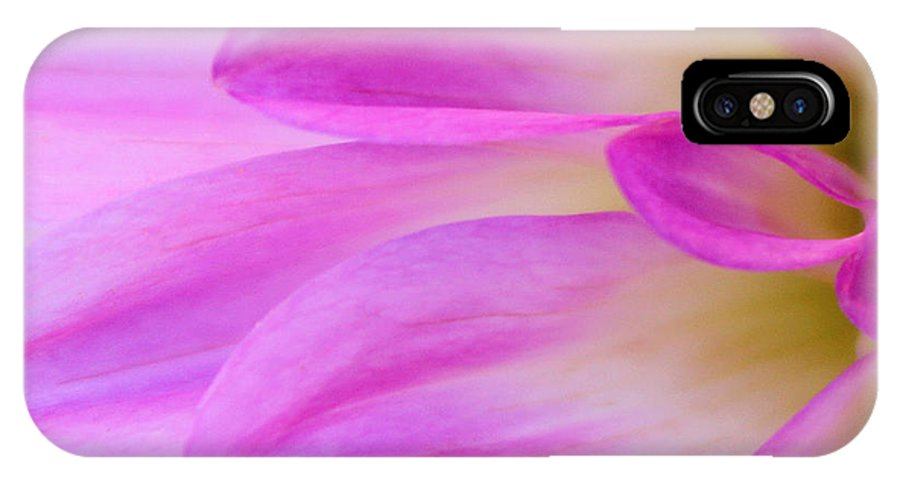 Dahlias IPhone X Case featuring the photograph Finest by The Art Of Marilyn Ridoutt-Greene