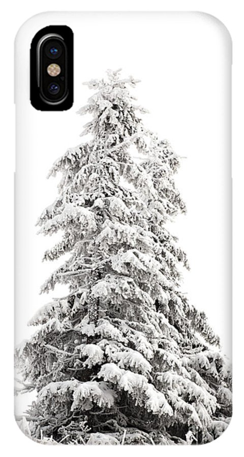 Snow IPhone X Case featuring the photograph Fir Tree In Winter by Florea Marius Catalin