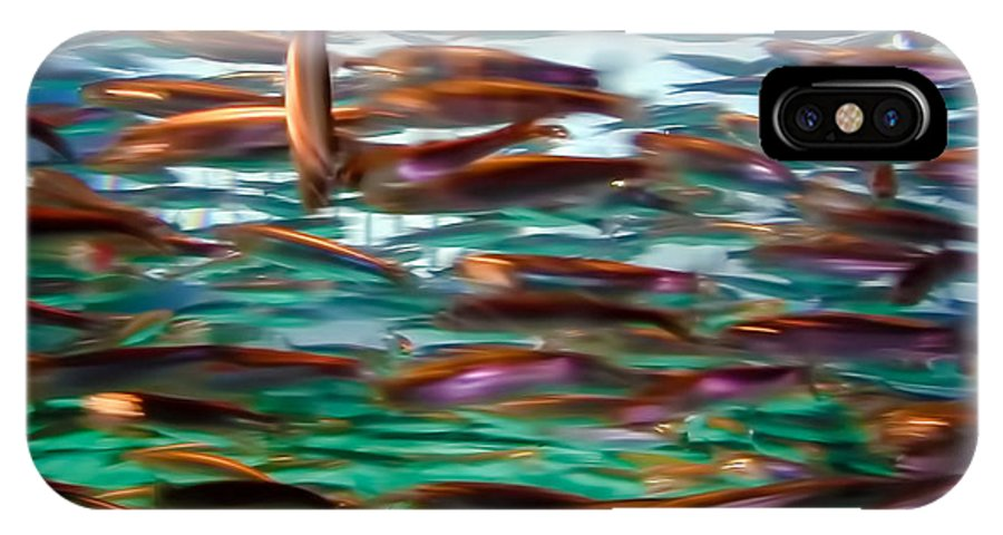 Fish IPhone X Case featuring the photograph Fish 1 by Dawn Eshelman
