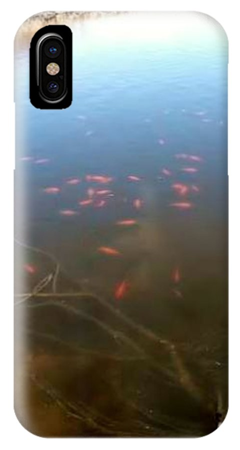 Fish IPhone X Case featuring the photograph Fish In A Pond by Wendy Hall