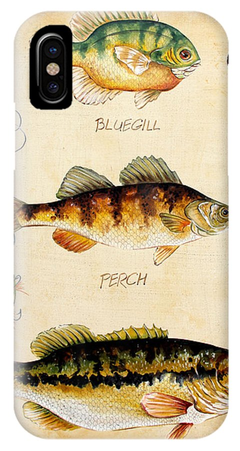 Acrylic Painting IPhone X Case featuring the painting Fish Trio-c by Jean Plout