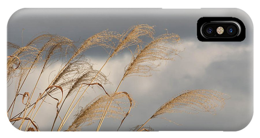 2014 IPhone X Case featuring the photograph Flags Waving by Jessica Lowell