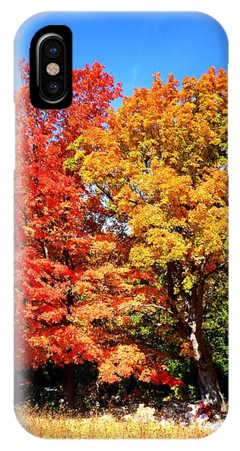 Autumn IPhone X Case featuring the photograph Flamboyant Autumn by Cristina Stefan