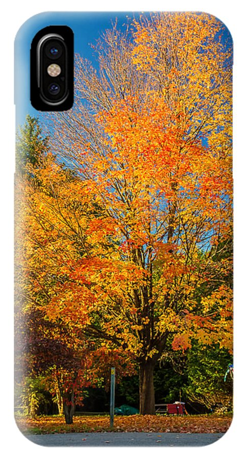 Steve Harrington IPhone X Case featuring the photograph Flaming by Steve Harrington