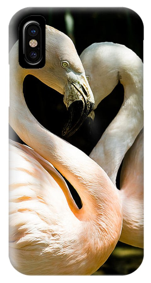 Flamingo IPhone X Case featuring the photograph Flamingo Heart by Gaurav Singh