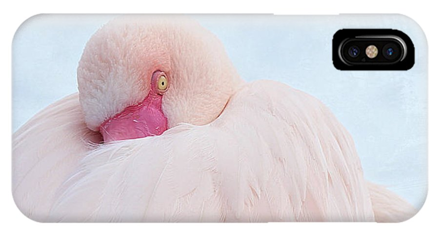 Flamingo IPhone X Case featuring the photograph Flamingo by Heike Hultsch